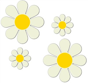 "Magnetic Daisies - Warm White  - Set of 4 (2 - 4.5"" and 2 - 9"")"