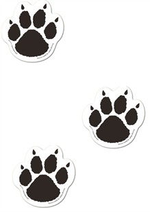 Pooch Paws - Magnetic Dog Paws - 6-Pack